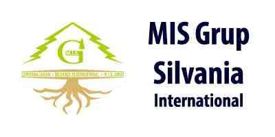 MIS Grup Sivania logo